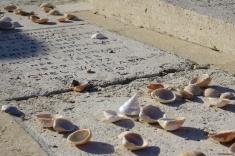 Mémoire (15 novembre 2015) - En ce mois de novembre qu'ouvre le jour des morts, mon inspiration est venue des cimetières... Trois variations sur ce thème de la mémoire, du souvenir, de la trace