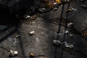 La Photo du Mois : dentelle